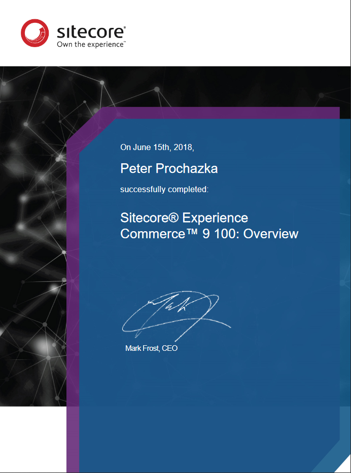 Sitecore Experience Commerce 9 100 - Overview
